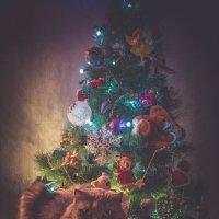 Рождество :: виктория иванова