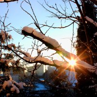 Зима... солнце клонится к закату. :: Николай Щеглов