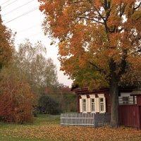 осень в деревне :: оксана