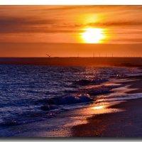 Вечер...море...волшебство... :: Ольга Голубева
