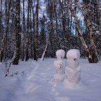 Еще раз о Морозко :: Александр