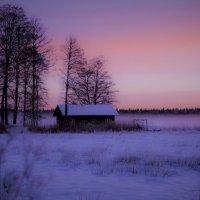 зимним утром :: liudmila drake