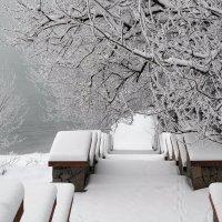 Первый снег :: Vladimir Lisunov