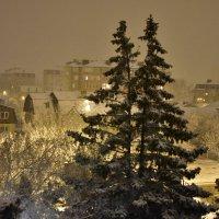 Зимний вечер на юге :: Елена Нор