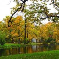 Осеньв Царском селе :: GalLinna Ерошенко