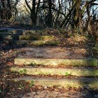 Лестница ведущая в небо.. :: Kapris VS