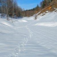 Снежный пейзаж :: Сергей Тарабара