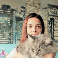 Любимый кот :: Людмила Монахова