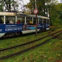 трамвай фантазий :: Ник Карелин