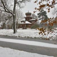 Осенний снегопад в Здравнёво :: Леонид Иванчук