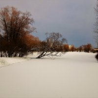 Над прудом склонилась... :: Sergey Gordoff