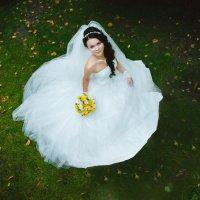 Свадьба :: александр павлов
