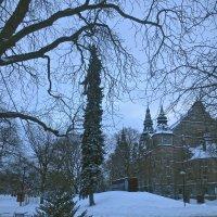 В снежном одеянии. Стокгольм :: Елена
