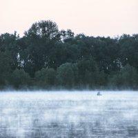 Дымка на воде. :: Svetlana