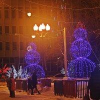 Святки  в  Тамбове ! :: Виталий Селиванов