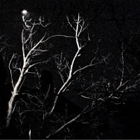 ночь, улица, фонарь... :: Александр Корчемный