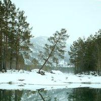 Рождество на Алтае. Голубые озёра. :: Ольга