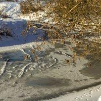 Зимняя река. :: Анатолий. Chesnavik.