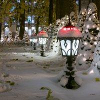 После снегопада :: Олег Козлов