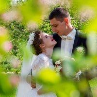 жених и невеста под деревом :: Егор Чеботаренко