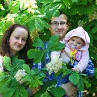 Семейная :: Виолетта Бычкова