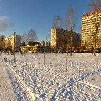 Мороз и солнце, день чудесный :: Андрей Лукьянов