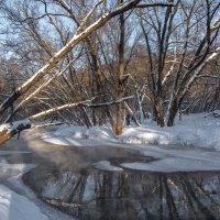 Как замерзает речка. :: Владимир Безбородов