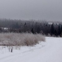 Зима#3 :: Liudmila Antonova