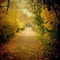Природа осенью :: mAri