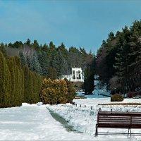 В зимнем парке :: Александр Смольников