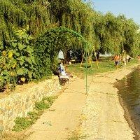 В жаркий день на речке :: Светлана