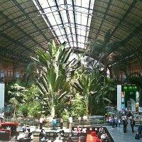 Здравствуй Мадрид! Вокзал Аточа (Atocha ) :: Виталий Селиванов