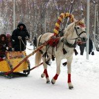 Зимние забавы :: раиса Орловская
