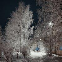 Дворик в январе... :: Сергей Смоляков