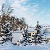 В  снежном  убранстве :: Любовь Потеряхина