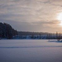 Новое Солнце 2017 :: Денис Шестаков