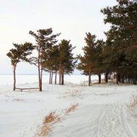 На берегу. :: Мила Бовкун