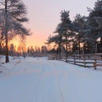 Зимы чудный рассвет... :: Павлова Татьяна Павлова