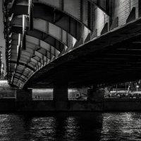 Разговор под мостом :: Eugene *