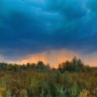Перед грозой. :: Андрей Козлов