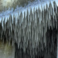 Ледяные иголки :: Сергей Карачин