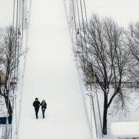 Зимняя прогулка :: Андрей Липов