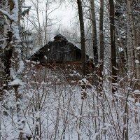 Домик в лесу :: Катя Бокова