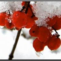 осень - зима. :: Ivana