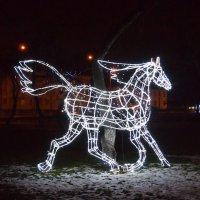лошадь :: Александр Прокудин