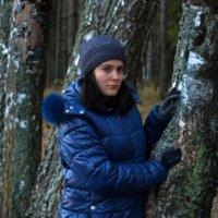 В осеннем лесу :: Елена Гордон