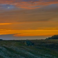 Дорога к  закату :: Александр Березуцкий (nevant60)
