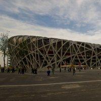 Гнездо, Олимпийский Стадион, Панорама :: Alexander Demetev