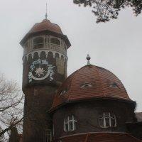 Водонапорная башня под декабрьским дождем :: Марина Домосилецкая