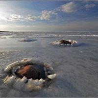 Зима на Балтике :: Николай Кувшинов